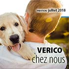 Julliet Newsletter
